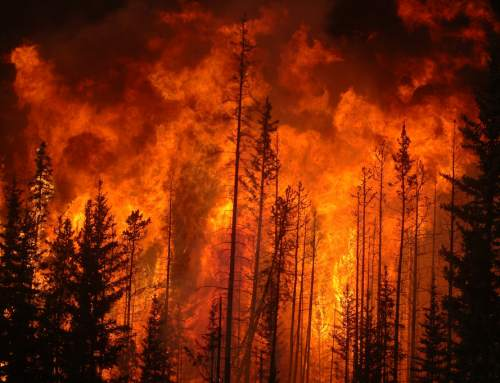 Research proposes 3D printed sensors to work as warnings in extreme environmental conditions