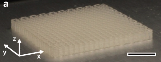 A 3D printed grid of cellulose nanocrystal ink. Image via Siqueira, Kokkinis, Libanori, Hausmann, Gladman, Neels, Tingaut, Zimmermann, Lewis and Studart
