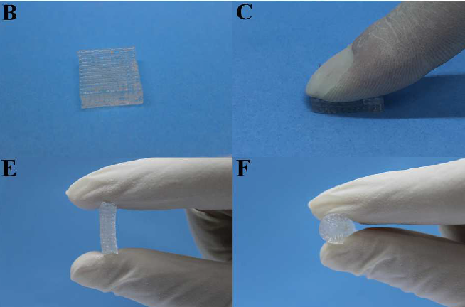 The 3D printed hydrogel-nanoclay material as a scaffold (b), and gridded cylinder (c, e, f) Image via ACS Biomaterials Science & Engineering, May 2017