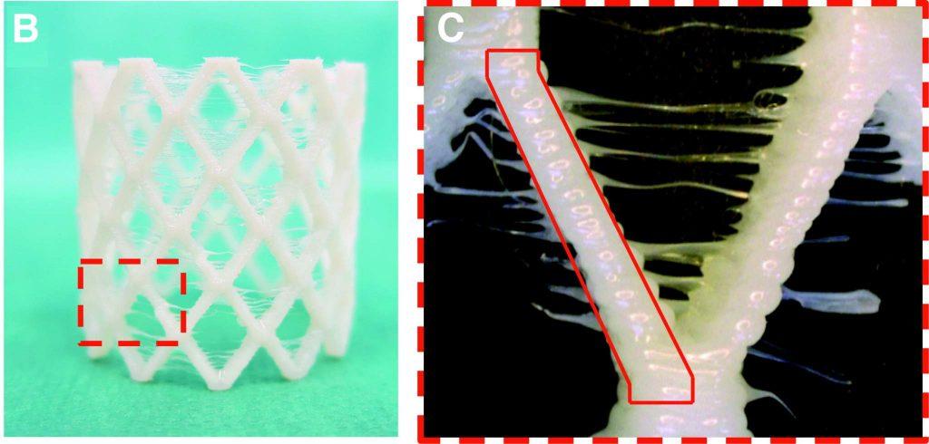 Experimentally 3D printed FlexiFil stent. Image via Cabrera Sanders, Goor, Driessen-Mol, Oomens, & Baaijens