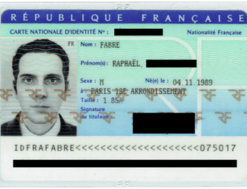 Blurring reality as artist's 3D model tricks national identity card issuer