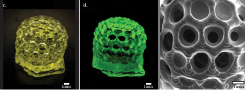 The structure of a DLP 3D printed Bucky ball successfully created with the use of the new photointator family developed by Magdassi et al. (c) The Bucky ball in regular light, (d) The Bucky Ball under UV to highlight potential imperfections, (e) Scanning electron microscope (SEM) image of the ball's surface on a molecular scale. Image via Nano Letters.