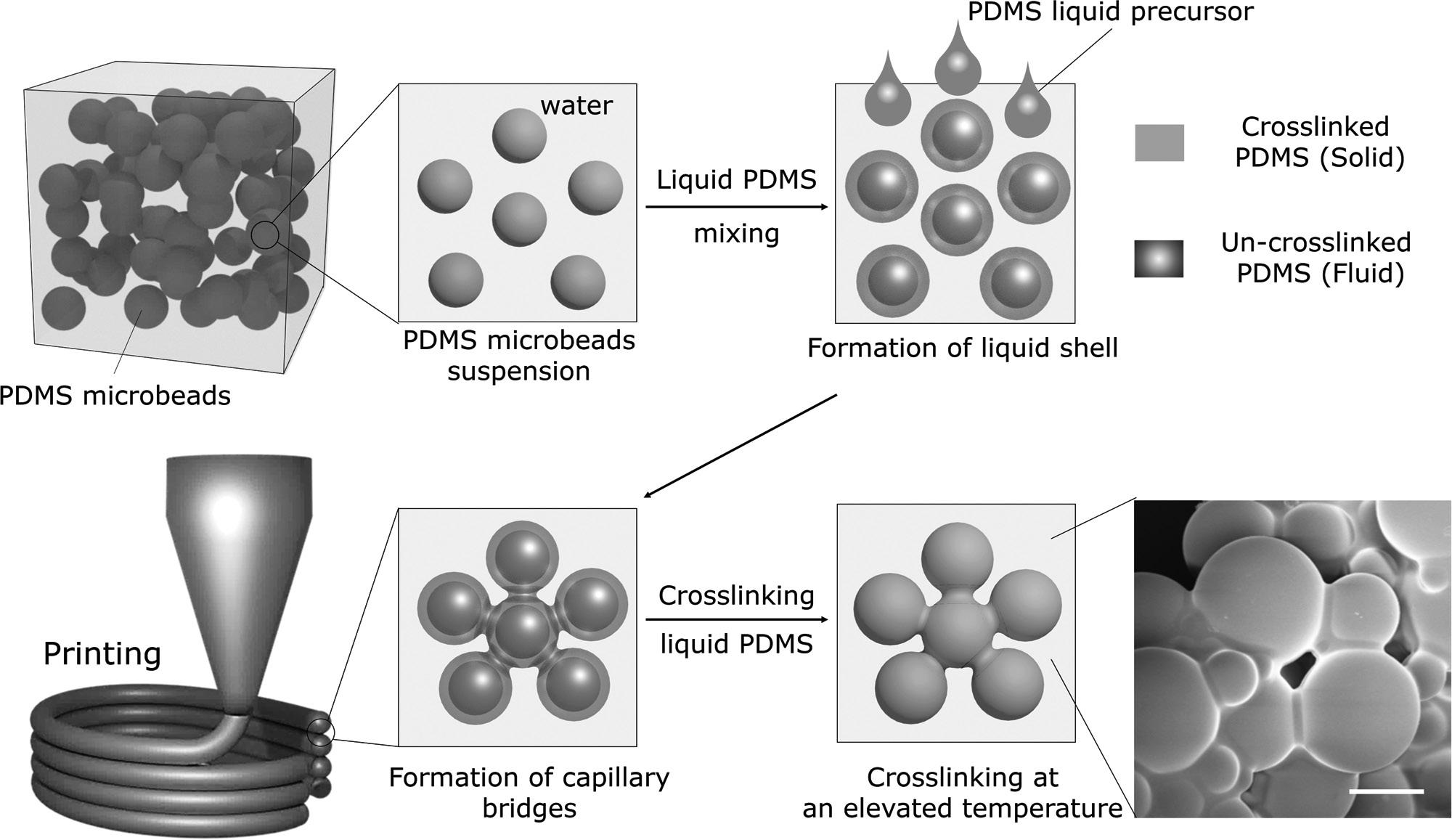 Figure 1 from the paper demonstrates the different stages and the silicone binding process. Image via Advanced Materials.