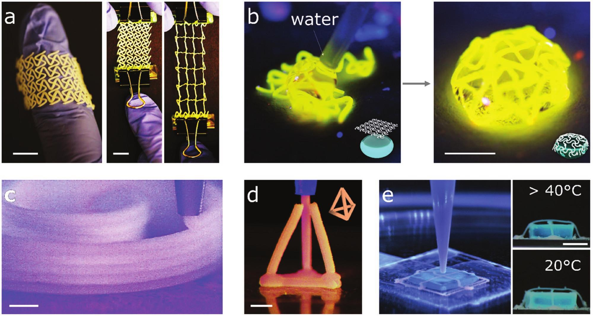 "Figure 4 from the paper shows ""examples of 3D printed ultraflexible PDMS structures made after curing of capillary-bridged bead suspensions."" Image via Advanced Materials."