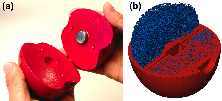 The finished temperature reading device (left) and a x-ray generated image of the artificial apple containing simulated pulp. Image via the Journal of Food Engineering.