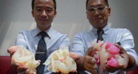 A new heart for the NAMIC. NAMIC partners Creatz3D hold custom 3D printed models. Photo via Creatz3D
