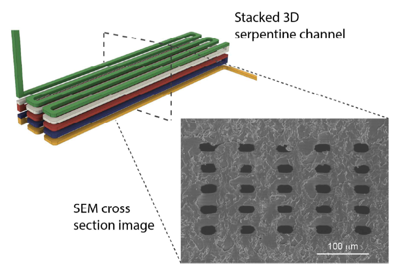 Design of a stacked serpentine channel 41 mm long on a 0.12 mm squared chip with SEM cross section. Image via Gong, Bickham, Woolley & Nordin