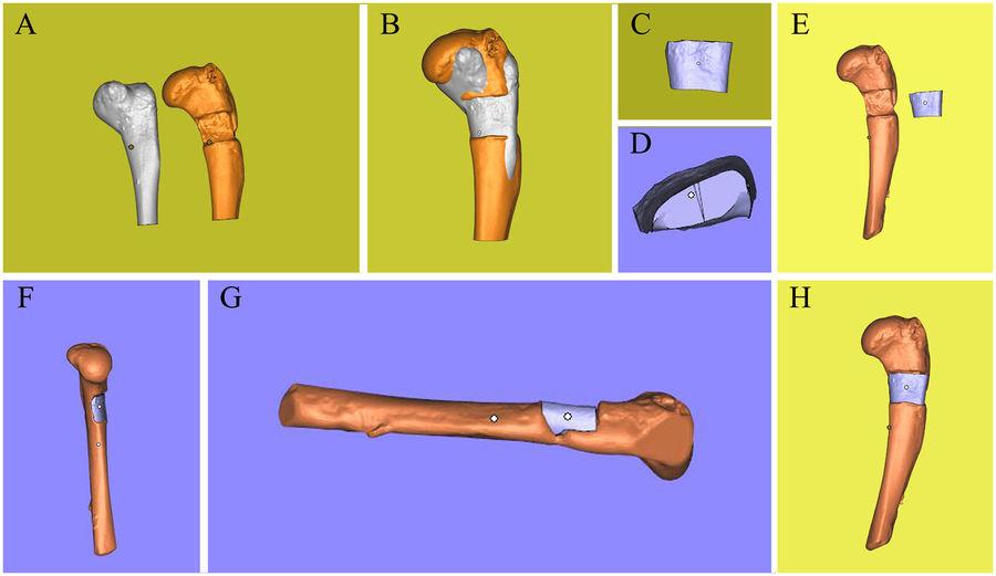 Modeling the missing pieces. Image via Lan Li, Fei Yu et al. Scientific Reports.
