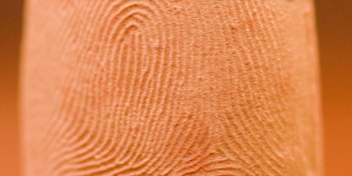 Lifelike biometric fingerprint models created using 3D