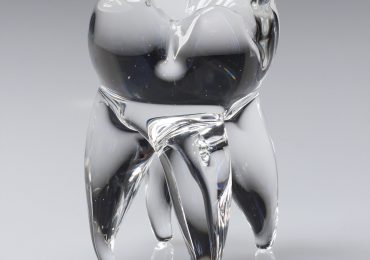 Wisdom Tooth glass paperweight by Frost Glass.