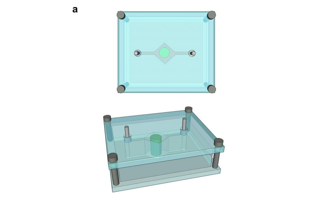 Design of a single organ-on-a-chip device including a central diamond pocket for appropriate cell tissue. Image via Scientific Reports