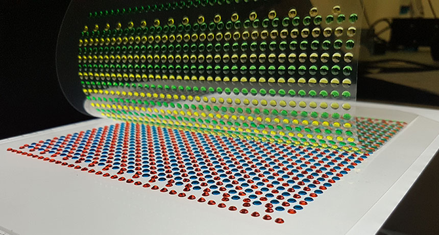 Two sheets of gels, one containing low and high salt concentrations (blue and red) and one with positive and negative ion pathways (yellow and green) are laid on top of one another in this example. Photo by Thomas Schroeder
