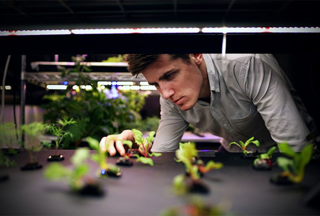 Andrew Shearer, CEO and Co-Founder of Farmshelf tends to seedlings on 3D printed pods. Photo via Ultimaker