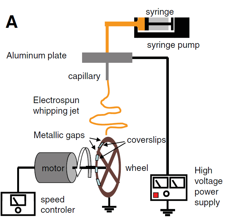 Scheme of the electrospinning setup. The silk fiber solution (orange) is pushed through a syringe and electrospun on a rotating wheel carrying glass coverslips. Image via figure 1A in Wittmer et al., 2011.