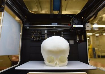 3D printed skull model. Photo via 3D LifePrints