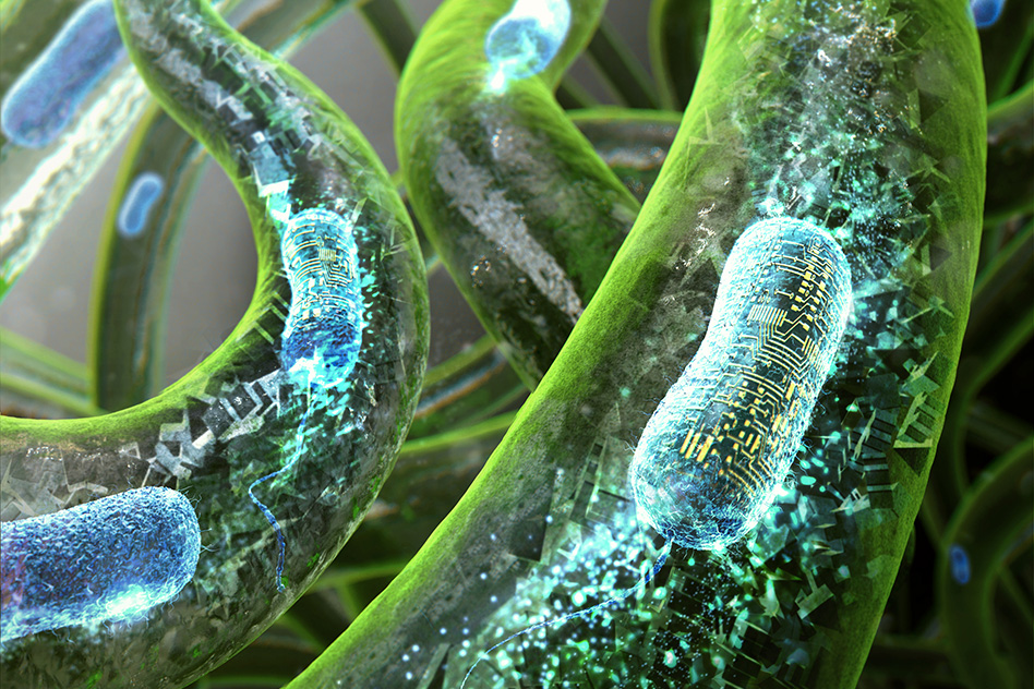 3D visualisation of Bacteria in the living material completing computing operations. Photo via MIT.