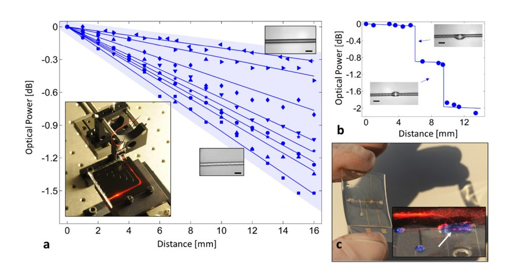 An infrared light redirects when shone through a 2.5D printed chip. Image via Optics Express