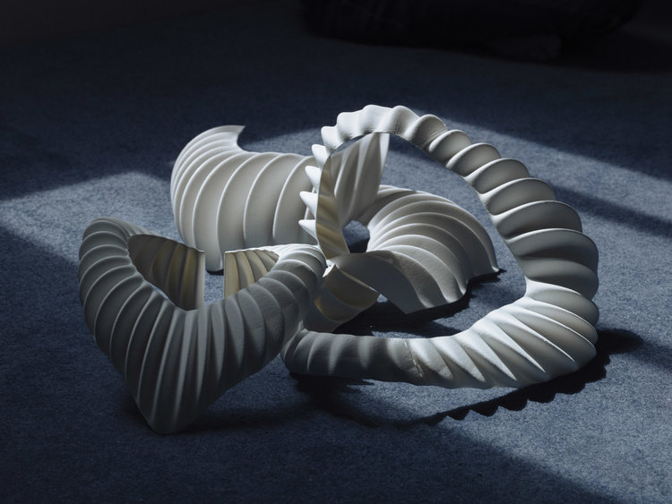 Amphibio 3D printed gills. Design by Jun Kamei / Photography by Mikito Tateisi