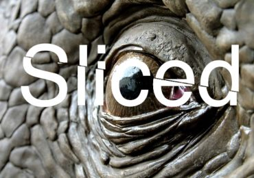 Sliced logo over the 3D printed and finidhed triceratops made by Metrolpole. Original photo vai Metropole/Massivit 3D