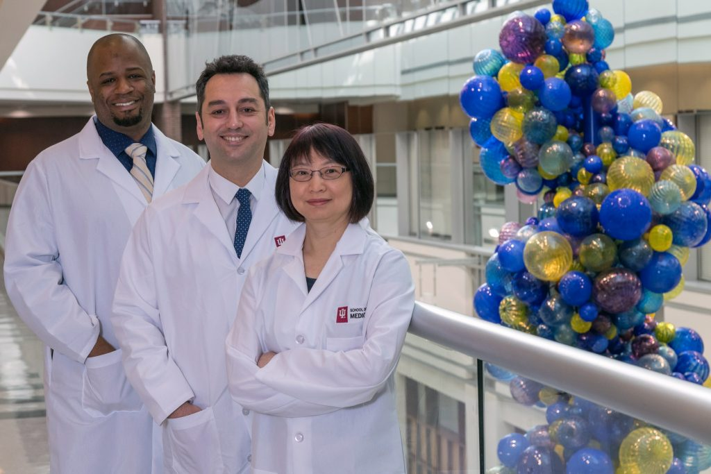 From left to right: Lester Smith, PhD; Burcin Ekser, MD, PhD; and Ping Li, PhD of the University of Indiana's Xenotransplantation lab. Photo by Erich Schoch/IU