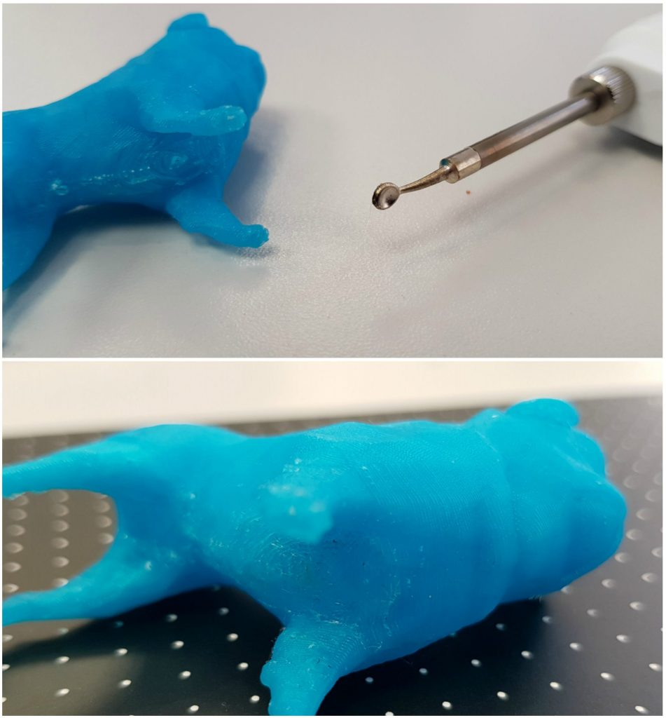A pre 3D printed dog before and after smoothing with the Mini 2 burning tool. Photos by 3D Printing Industry
