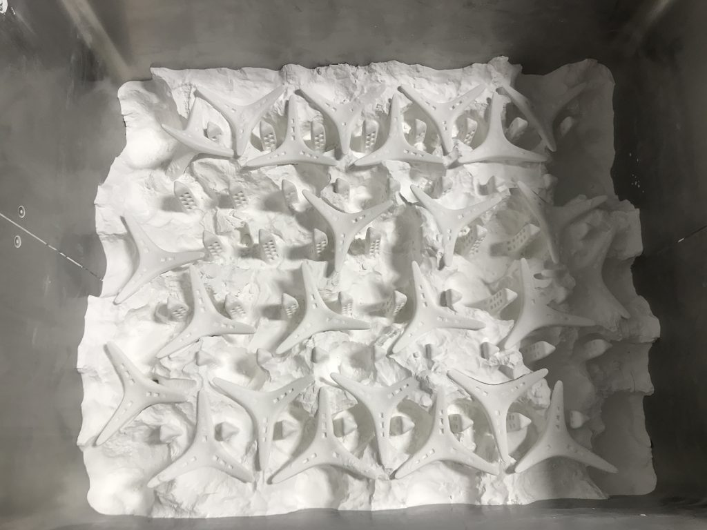 A packed bed of Boston Ceramics 3D printed seeding units. Photo via SECORE International