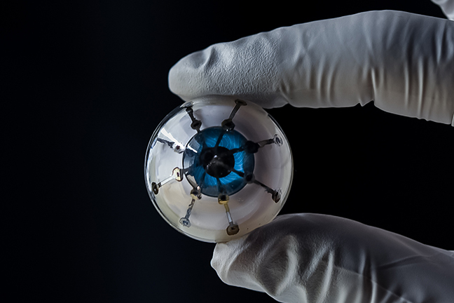 "The 3D printed optoelectronic ""bionic eye"" device. Photo via UMN/McAlpine Group."