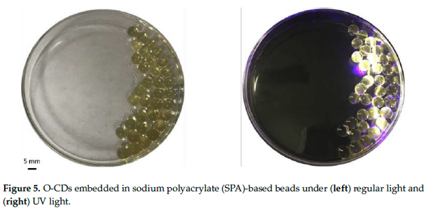 SPA embedded with OCD's under regular light (left) and UV light (right). Image via Polymer journal