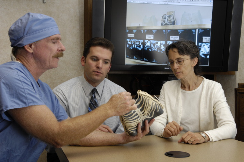Dr. Jane Matsumoto, M.D. (right), co-director of the Anatomic Modeling Lab, with Dr. Christopher Moir, (left), using models to plan the separation of conjoined twins. Photo via the Mayo Clinic.