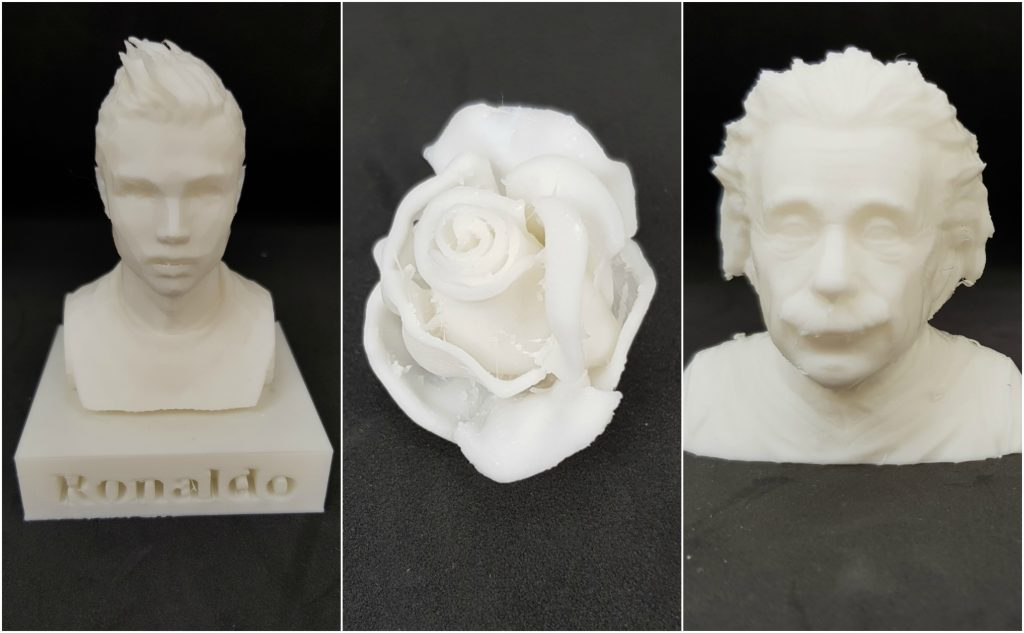 Ronaldo bust, rose and Einstein 3D printed on the 3DWOX 1.