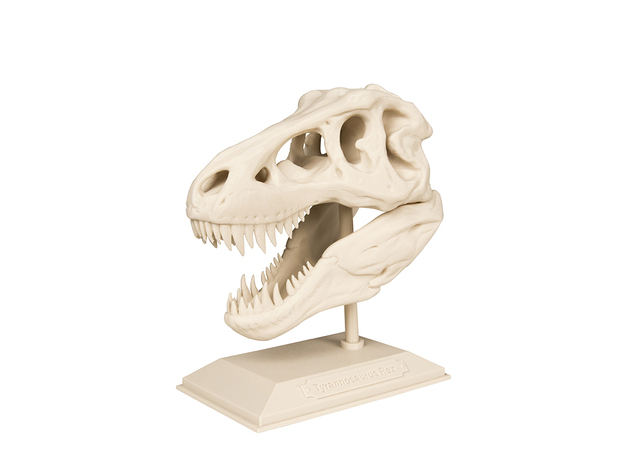 Example T-Rex Skull 3D printing project from MakerBot Academy. Photo via MakerBot/Thingiverse