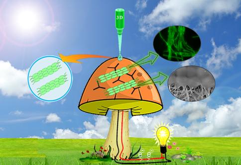 3dprintingindustry.com - Beau Jackson - Scientists 3D print a bionic mushroom to generate bioelectricity