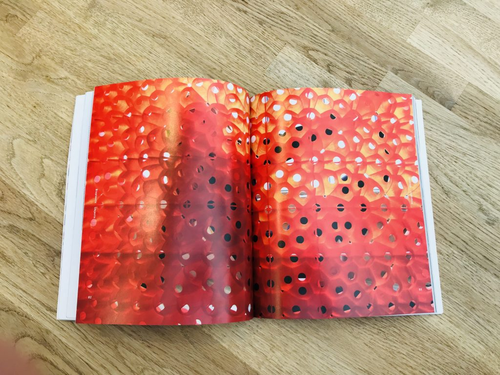 The bioplastic Picoroco Wall from Emerging Objects, as featured in Printing Architecture: Innovative Recipes for 3D Printing by Ronald Rael and Virginia San Fratello.