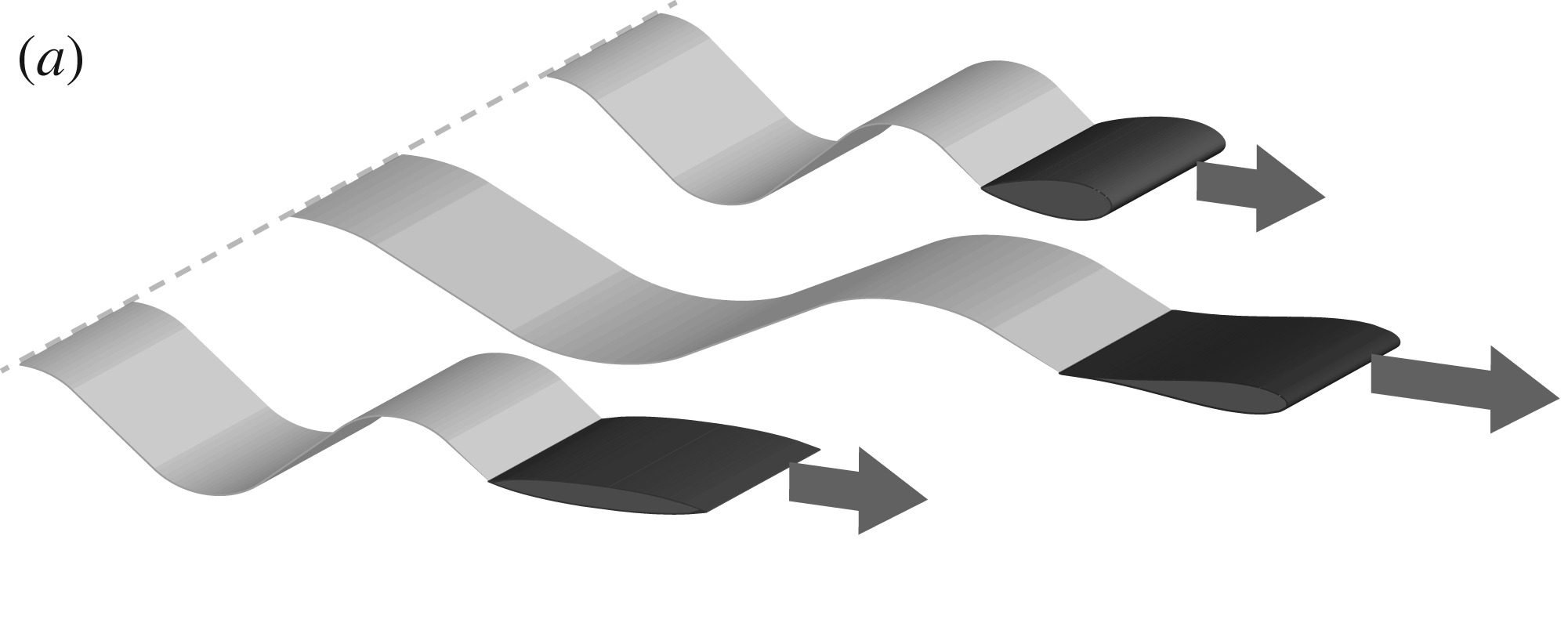 Effect of shape on the forward flight of a heaving and plunging wing. (a) A race among wings or of varying cross-section. (b) Problem idealization: A wing is driven to heave up and down with amplitude A and frequency f, resulting in self-propulsion through a fluid while towing a drag payload. (c) Experimental realization: A 3D printed foil is connected to an upright shaft through which a vertical heaving motion is imposed, and rotary bearings allow for forward propulsion in orbits around a water tank. Image via NYU.