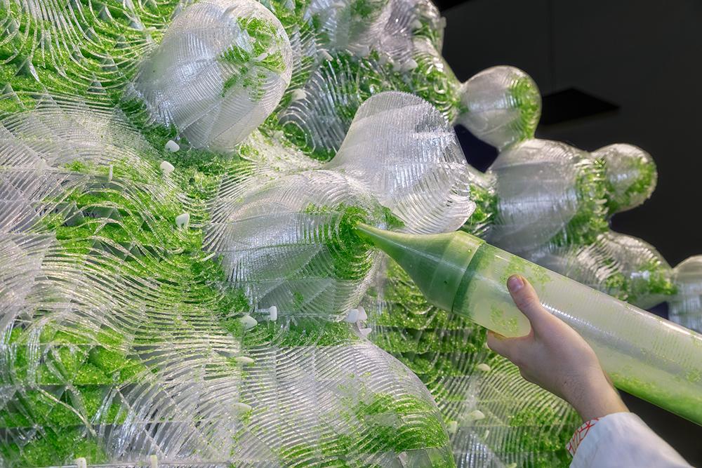 A close-up of the 3D printed H.O.R.T.U.S. XL Astaxanthin.g garden. Photo via ecoLogicStudio.