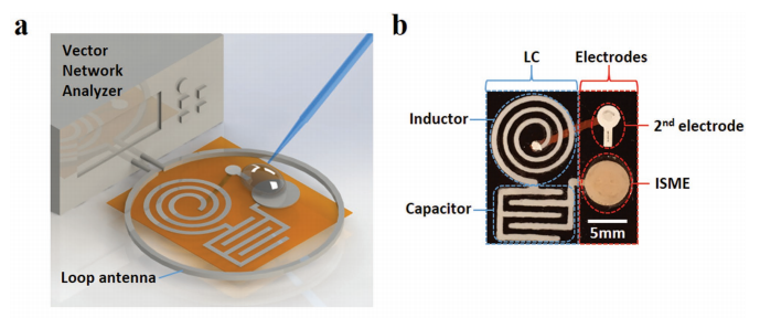 Design of the SFU/EMPA cellulose-based sensor. Image via Advanced Electronic Materials
