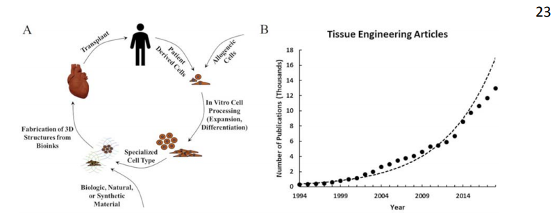The tissue engineering paradigm as described by Hoffman, Khademhosseini, and Langer, plus a demonstration of how published tissue engineering articles has risen in recent years. Image via Tissue Engineering journal