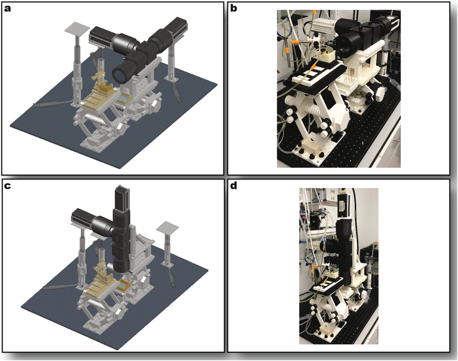 Full Optical System Assembly. Sideways imaging mode rendering (a) and photo (b) Upright imaging mode rendering (c) and photo (d). In the renderings, stage components are shown in light gray, optical components in dark gray, and perfusion components in gold. Image via GWU/MIPT.