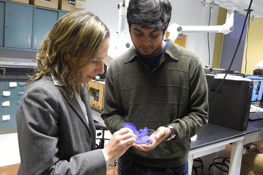 Professor Iris Rivero and doctoral candidate Srikanthan Ramesh hold a 3D bioprinted scaffold sample. Photo via RIT