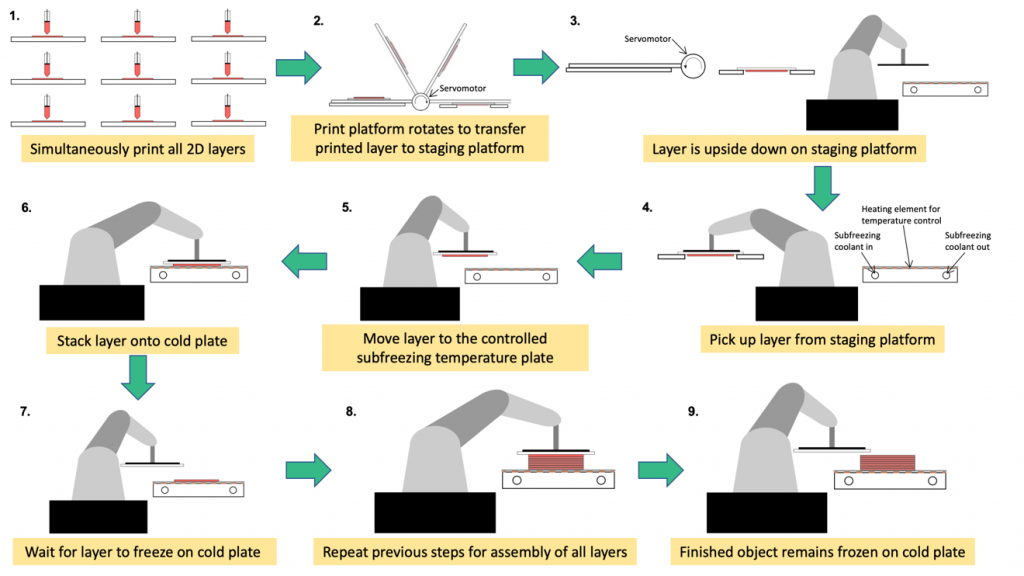 Step by step of the UC Berkeley multilayer cryolithography method. Image via ASME Journal of Medical Devices