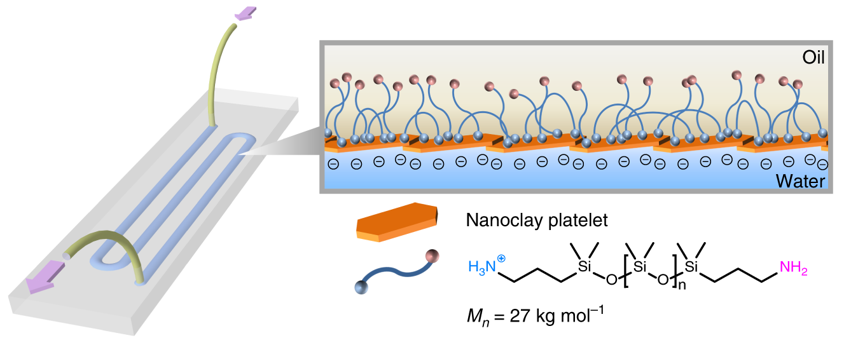 Schematic of an all-liquid fluidic device comprised of immiscible liquid phases confined in space using micropatterned substrates. Nanoclay–polymer surfactants (NPSs) self-assemble at the liquid–liquid interface, forming an elastic wall that allows the all-liquid architecture to maintain integrity while fluid is pumped through the channel. Image via Lawrence Berkeley National Laboratory.