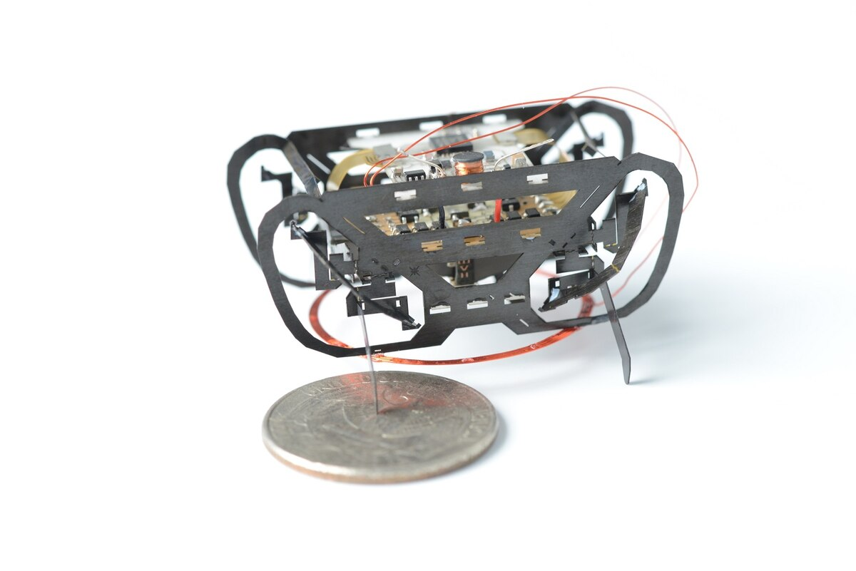 Miniature 3D printed robots to help search and rescue missions. Photo via Wyss Institute / Harvard University.