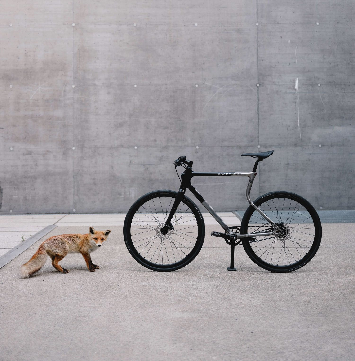 The Urwahn x Vagabund 3D printed bike next to its inspiration - the fox. Photo via Urwahn/Vagabund Moto.