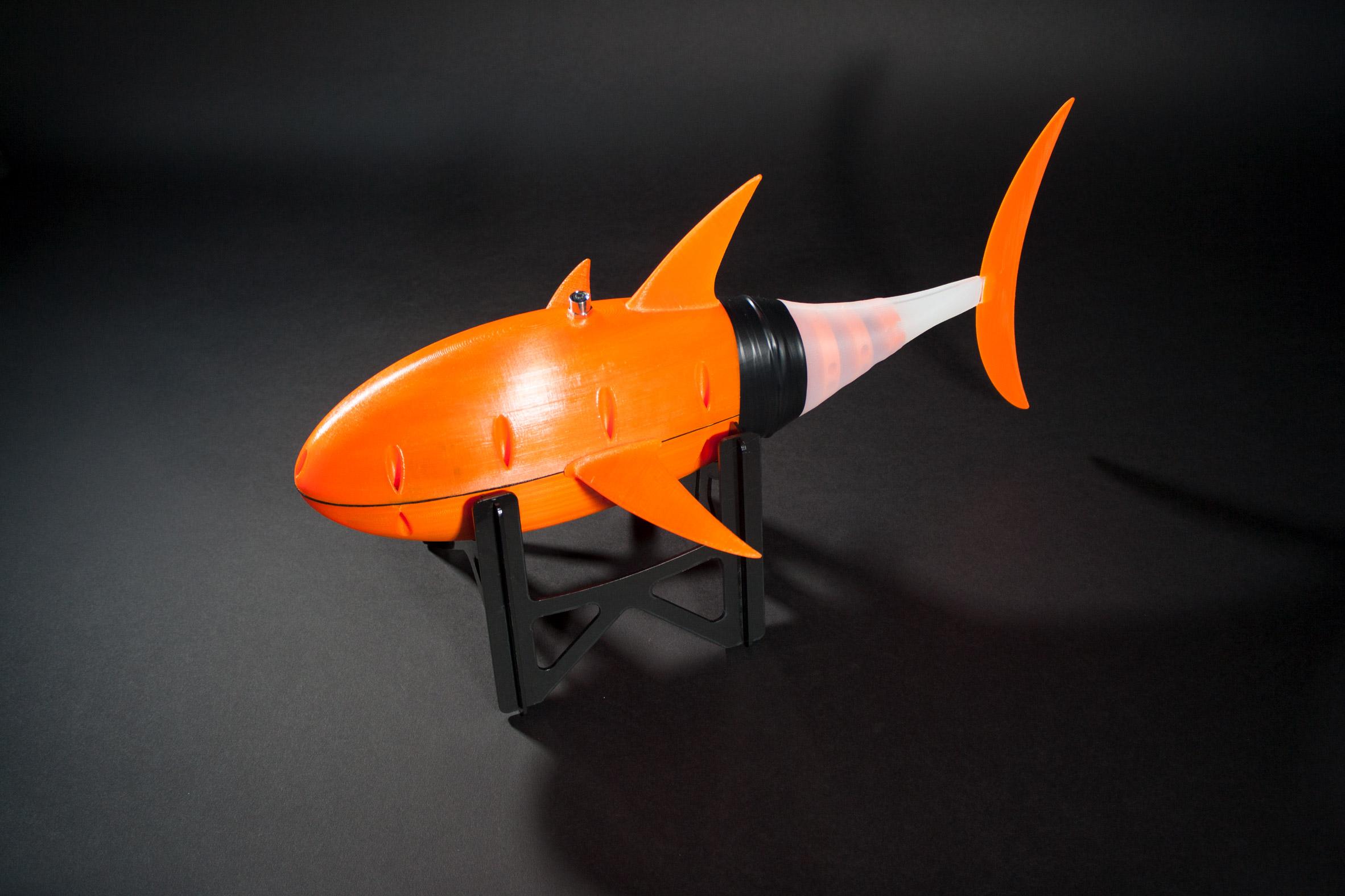 The 3D printed robotic fish. Photo via Sander van den Berg.