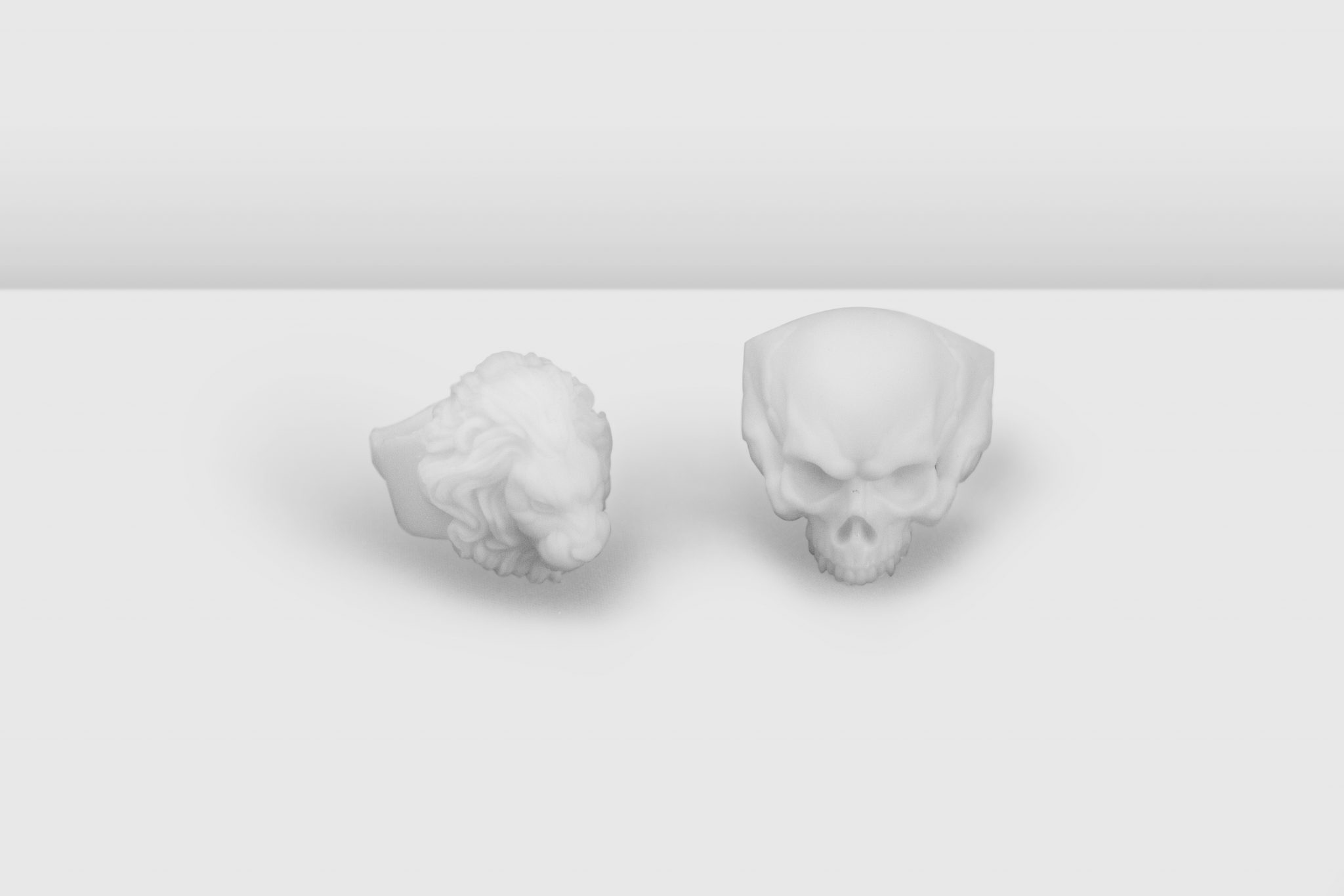 The skull and lion 3D printed models.