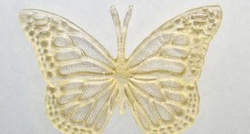 The plastic butterfly printed from the researchers' cooking oil-derived resin showed features down to 100 micrometres and was structurally and thermally stable. Photo via Don Campbell/UTSC.