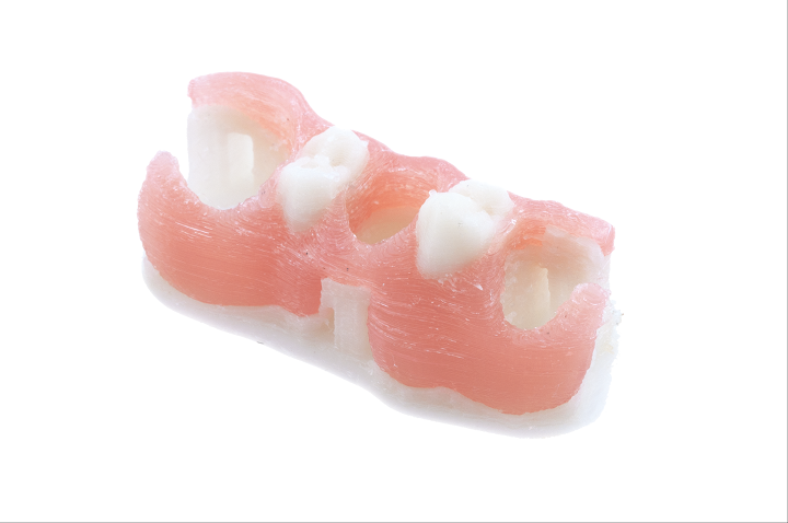 Dental model from FILAdent PMMA, biocompatible PMMA filament. Photo via Arfona.