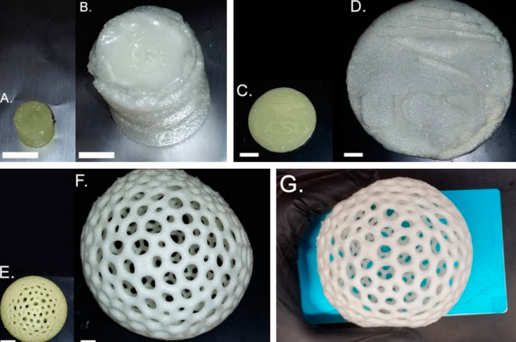 3D printed models before and after heat treatment. Photos via UC San Diego.