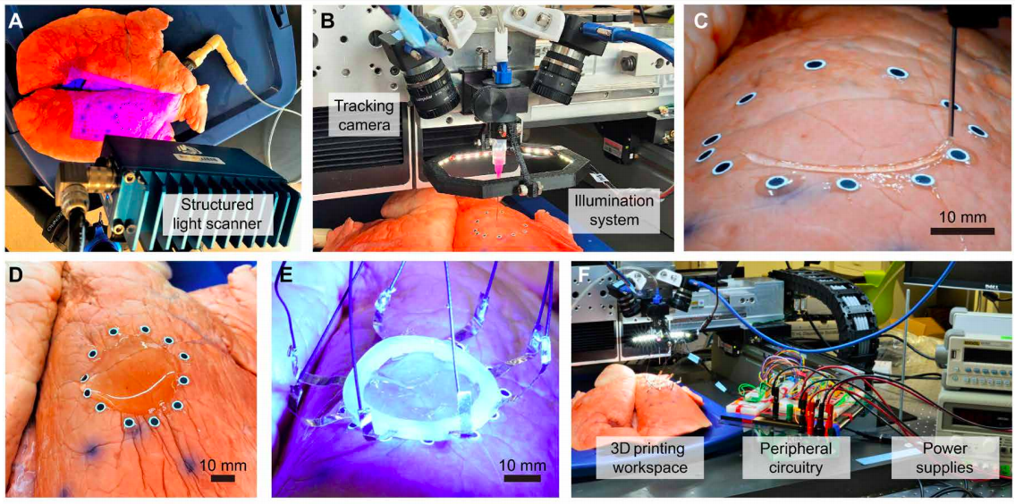 College of Minnesota researchers use movement seize expertise to 3D print sensors immediately onto increasing organs