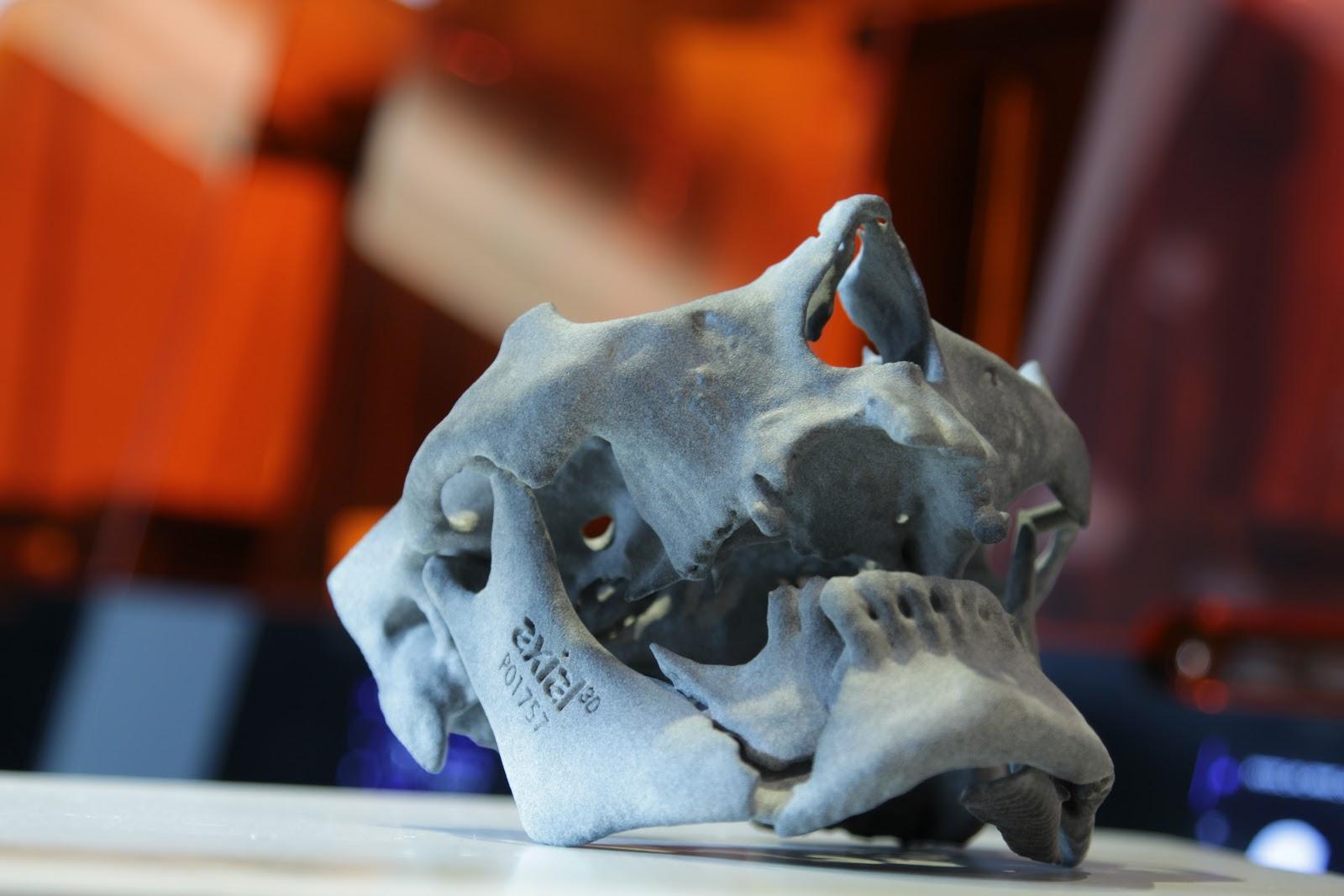 Axial3D 3D printed model. Photo via Axial3D.